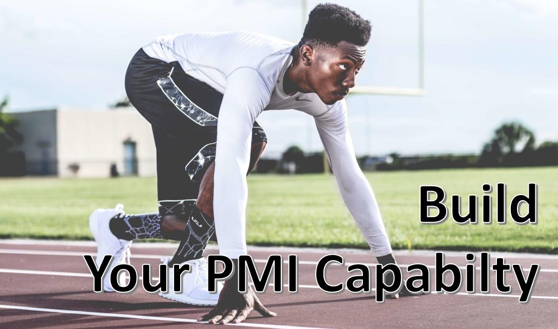 PMI – Building Internal Capability